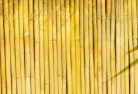 Andrews Bamboo fencing 4